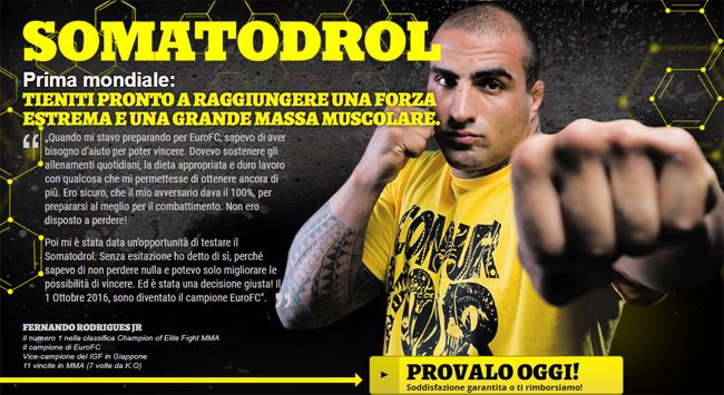 Somatodrol Homepage